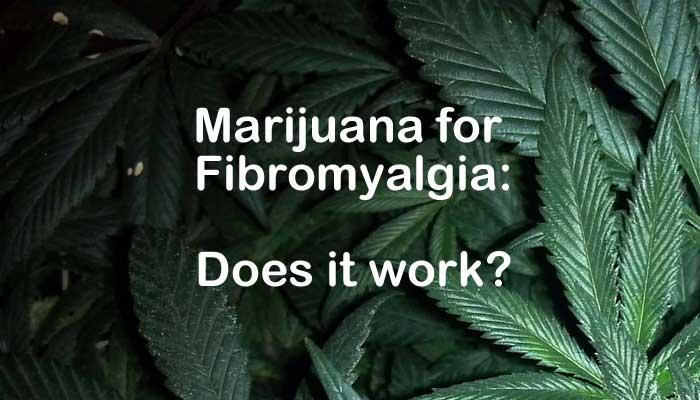 http://cannabiscorner.net/wp-content/uploads/2017/04/marijuanaforFibromyalgia.jpg